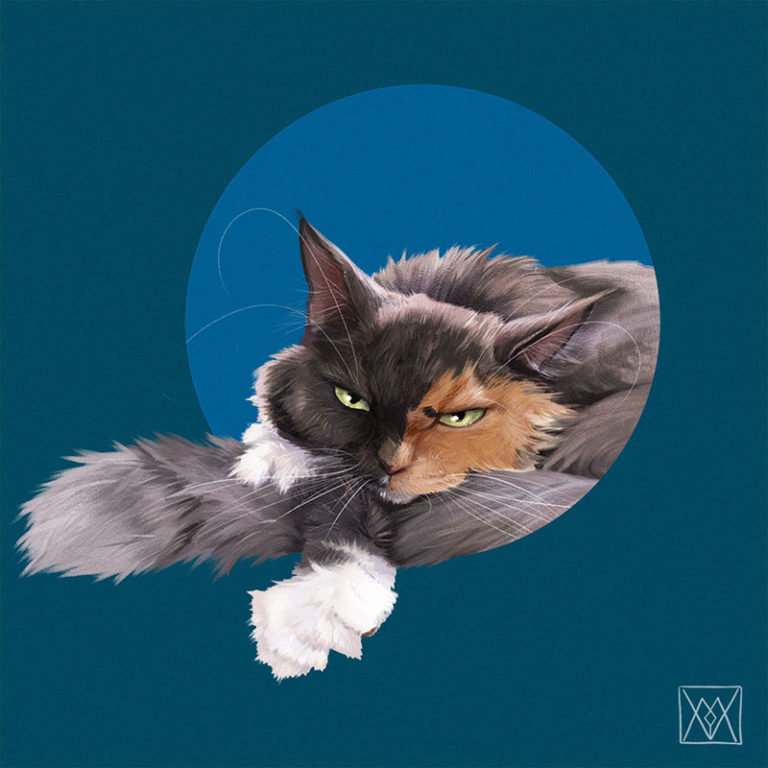 A cat coming from a blue circular frame