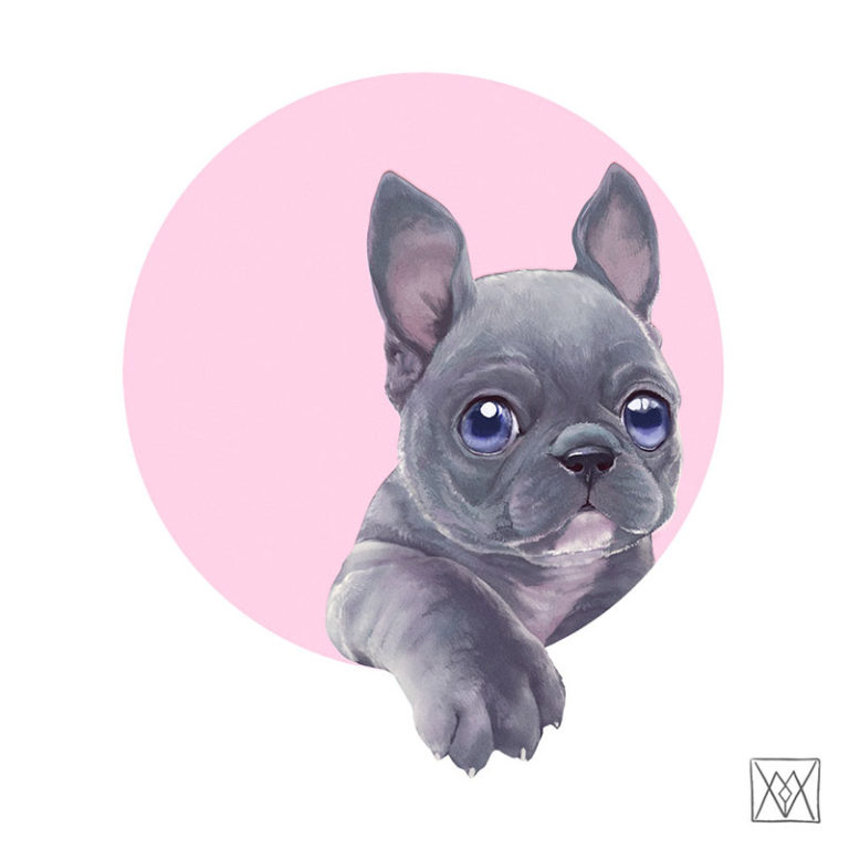Cute frenchie with its paw coming from a circular frame.