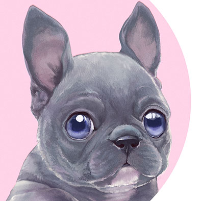 Sample Illustration of a french bulldog puppy made for my Etsy shop Listing